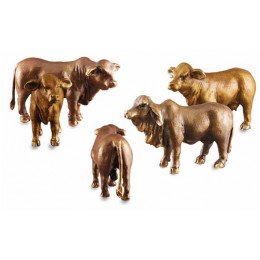 Cattle - Pete Smit