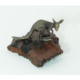 Kangaroo Crouching on Burl